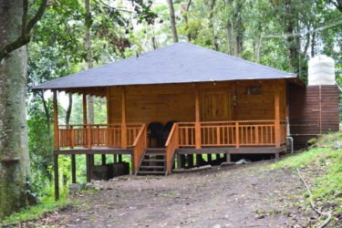 Family Individual Wooden House