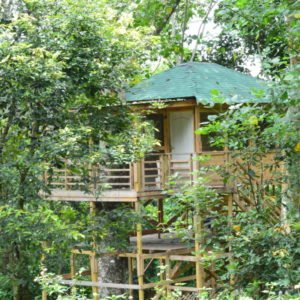 Kodai Vel Farms Resort Kodaikanal - Thandikudi - Wood House and Tree House