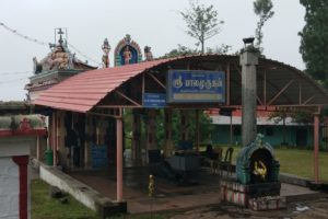 Temple View-1